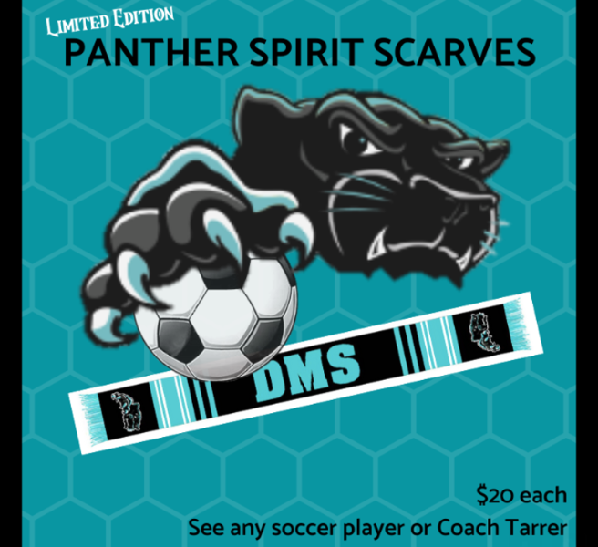 Soccer Team Scarves Available