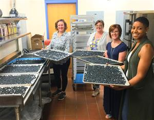 Lunchroom workers with trays of blueberries